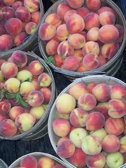 Famous Jones Orchard peaches